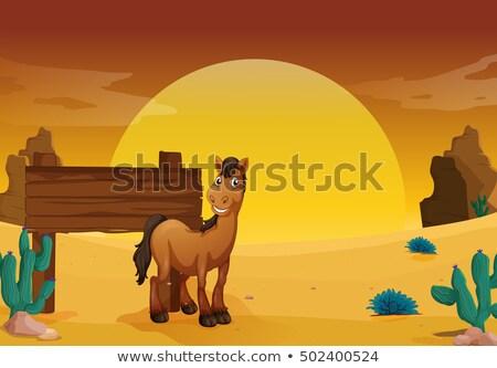 Westerse woestijn grond illustratie zonsondergang Stockfoto © colematt