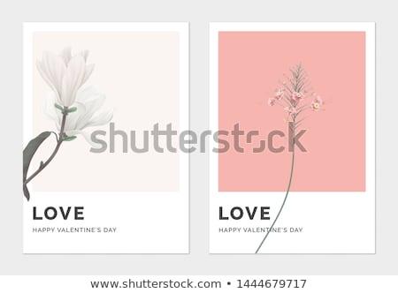 Minimalista szeretet valentin nap kártya sablon vektor Stock fotó © orson