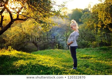 mutlu · genç · hamile · kadın · koca · Noel - stok fotoğraf © elenabatkova