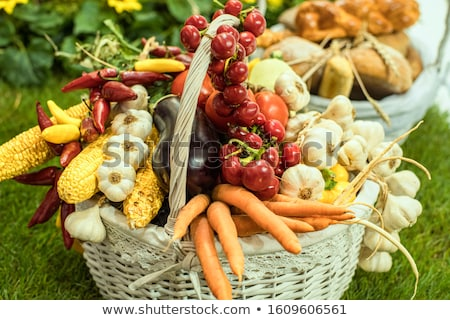 Basket with Farmer Products Isolated Carrot Potato Stock photo © robuart