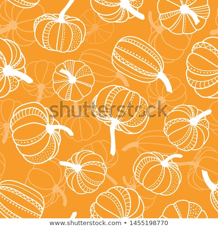 Cute pumpkin cartoon hand drawn style Stock photo © amaomam