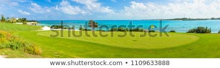 campo · da · golf · panorama · Ocean · view · bella · estate - foto d'archivio © epstock