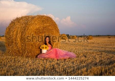 Vrouw mooie Blauw jurk hooiberg veld Stockfoto © ElenaBatkova