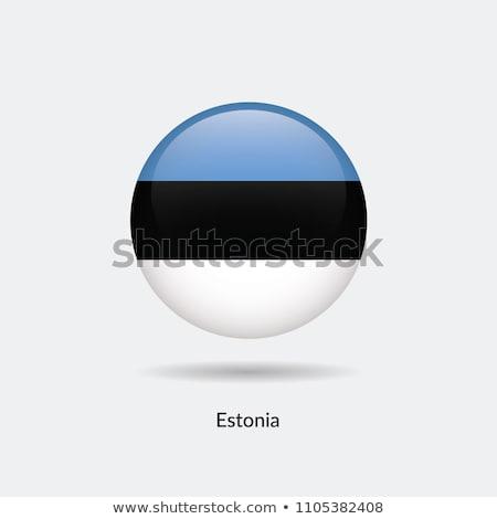 Észtország zászló fehér szív terv háttér Stock fotó © butenkow