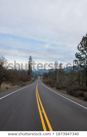 Lonely road under cloudy sky Stock photo © broker