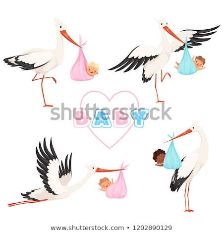 kislány · házhozszállítás · gólya · kalap · hordoz · újszülött - stock fotó © balasoiu