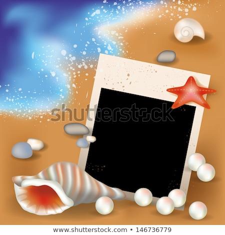 Summer photoframe with pearls, vector illustration Stock photo © carodi