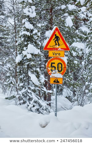 Traffic sign warning skiers Stock photo © Ustofre9