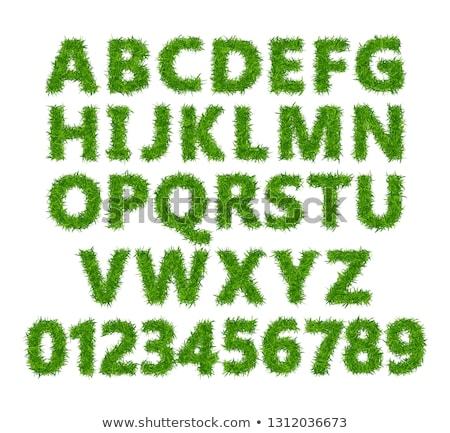 Alfabet groen gras geïsoleerd witte gras abstract Stockfoto © FrameAngel