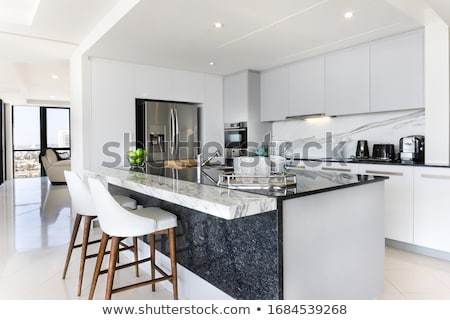Modern kitchen house interior stock photo © shivanetua
