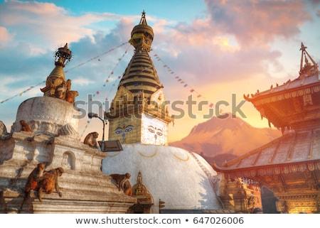 mono · templo · Nepal · edificio · puesta · de · sol · oro - foto stock © mariusz_prusaczyk