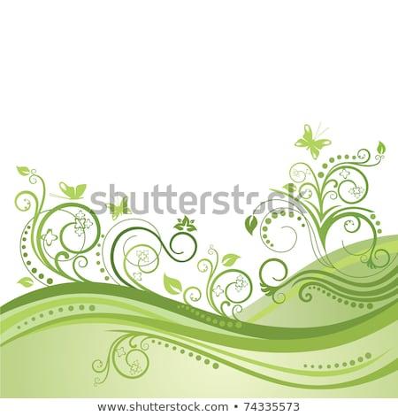 grünen · Blumen · Schmetterlinge · grünen · Gras · Kamille · Schmetterling - stock foto © bluering