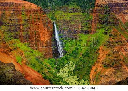 kanyon · kilátás · Hawaii · USA · fa · erdő - stock fotó © dirkr