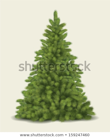 Christmas pijnboom krans kleurrijk bal kaart Stockfoto © cienpies