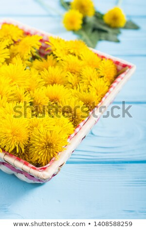 Dandelion flowers in a basket on a table Stock photo © madeleine_steinbach