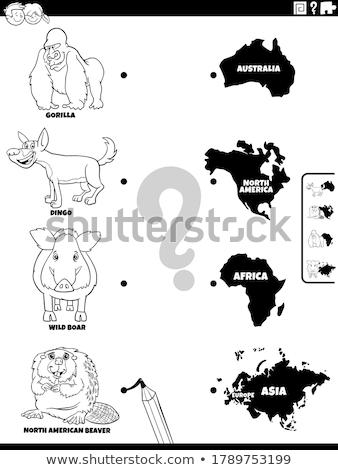 Gyufa állatok kontinensek formák oktatási játék Stock fotó © izakowski
