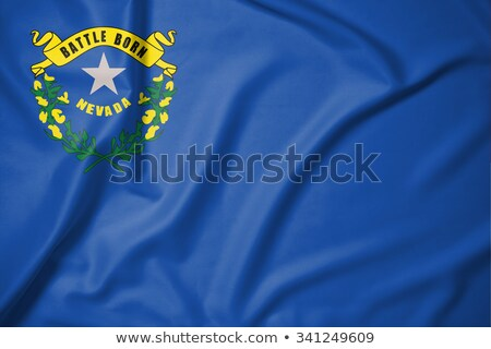 Bandeira Nevada elementos camadas Foto stock © nazlisart