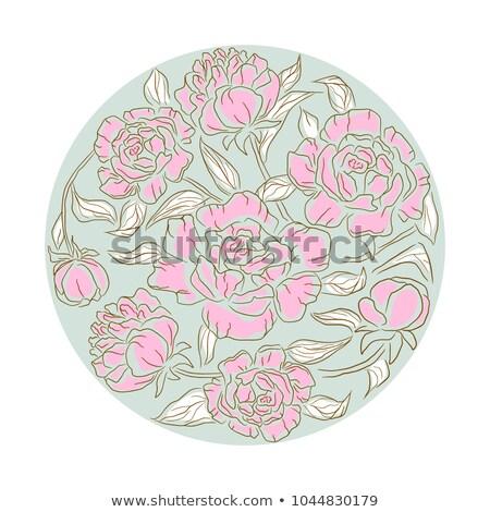 Fleur vecteur isolé floral ligne style Photo stock © yopixart