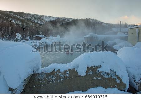 川 カバー 雪 氷 冬 空 ストックフォト © gwhitton