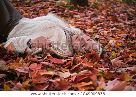 blond beauty laying on leaves stock photo © konradbak