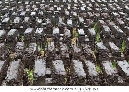 Peat Digging In An Upland Moor In Bavaria Germany Stok fotoğraf © haraldmuc