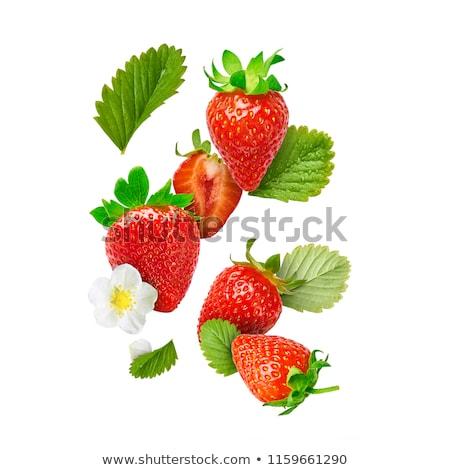 fraîches · fraises · isolé · blanche · fruits · santé - photo stock © arenacreative