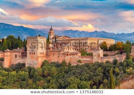 Alhambra aranyhal tavacska égbolt fa fal Stock fotó © pedrosala