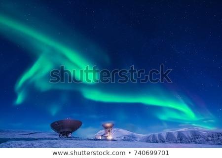 nature of antarctic Stock photo © mariephoto