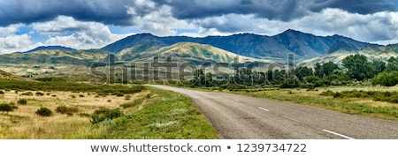steppe road Stock photo © mycola
