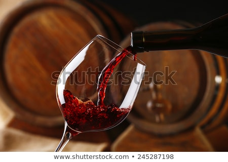 Wine beauty. Stock photo © lithian
