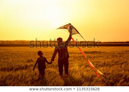gelukkig · kinderen · spelen · vliegen · Kite · zomer - stockfoto © monkey_business