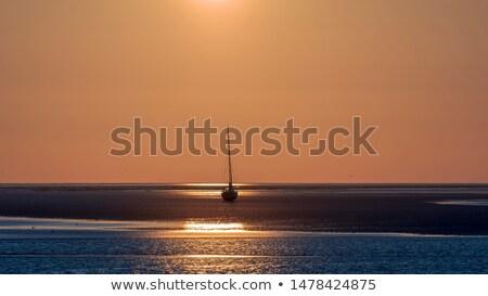 Wadden sea in Holland Stock photo © ivonnewierink