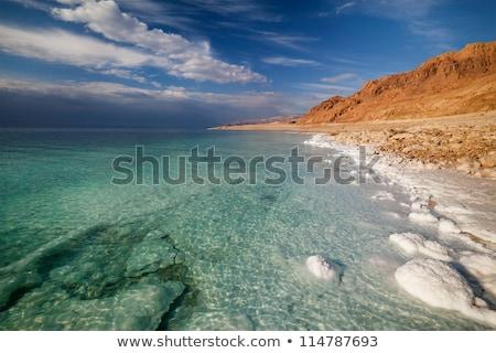 Landschap dode zee kustlijn hemel water Stockfoto © OleksandrO