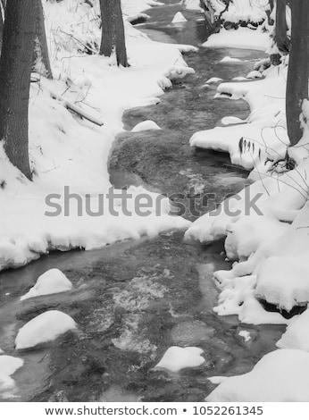Congelato torrente bella texture ghiaccio natura Foto d'archivio © ondrej83