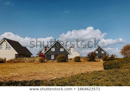 evleri · kuşlar · küçük · renkli · evler · barınak - stok fotoğraf © zhekos