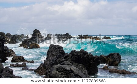 Lava rock coastline. Stock photo © iofoto