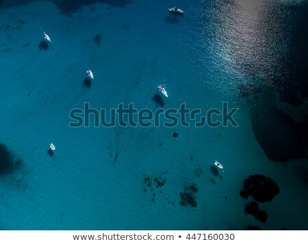 Aerial view of boats in a splendid cove in Corsica Stock photo © lightpoet
