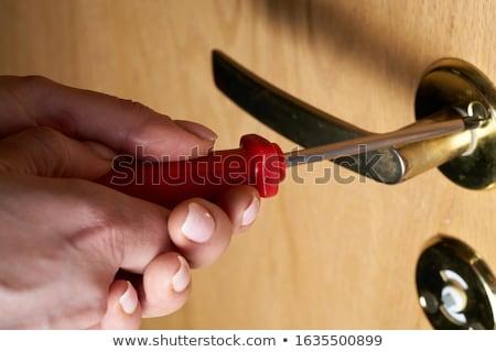 Main tournevis blanche charpentier fond blanc Photo stock © goir