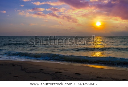 parasol over blue sky and beach Stock photo © dolgachov