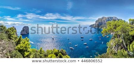 Napoli panorama İtalya panoramik görmek gün batımı Stok fotoğraf © joyr