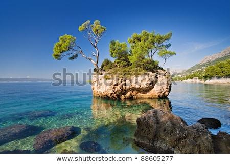 zeegezicht · klein · eiland · dubrovnik · heuvels · water - stockfoto © simply