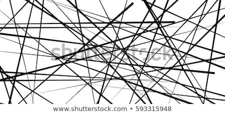 Abstrato branco caos linhas preto longa exposição Foto stock © Mikko