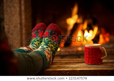 Otono invierno ardor chimenea Foto stock © Lana_M