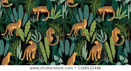 虎 ジャングル 実例 ツリー 葉 芸術 ストックフォト © bluering