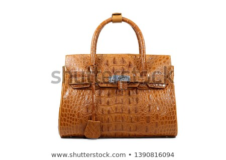 Maro crocodil piele geanta de mana izolat alb Imagine de stoc © acidgrey