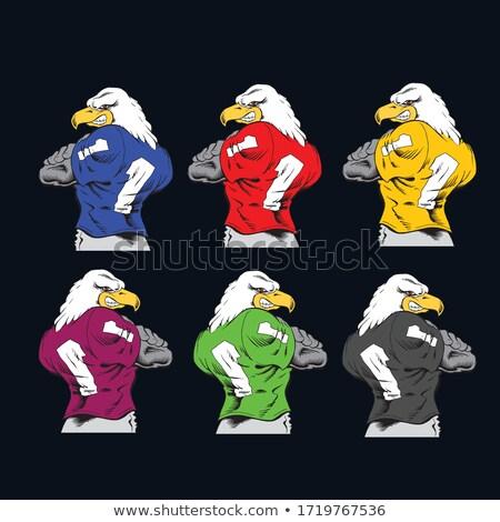 Americano fauna selvatica sport mascotte raccolta icona Foto d'archivio © patrimonio