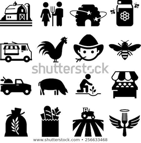 farmer planting seeds set vector illustration stock photo © robuart