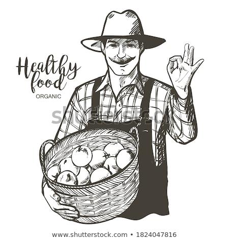 農民 笑みを浮かべて 野菜 ボックス ベクトル ストックフォト © robuart