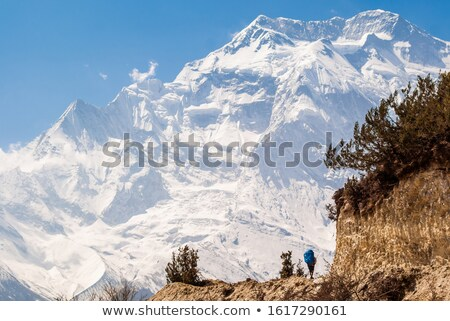 Face of Annapurna and Lonesome traveler with backpack walks on footpath. Stock photo © shai_halud