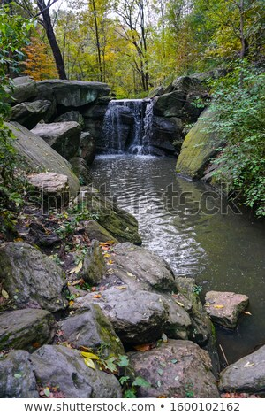 waterfall in woods Stock photo © rabbit75_sto